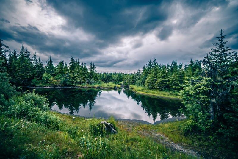 Paesaggio intorno al parco del ghiacciaio del mendenhall a juneau Alaska fotografia stock libera da diritti