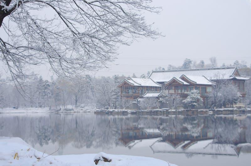 Paesaggio invernale con alberi giusti e case sotto la neve immagini stock libere da diritti