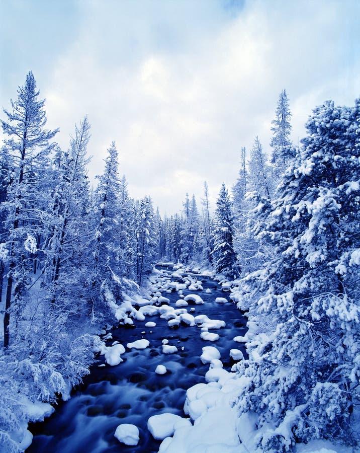 Paesaggio invernale del fiume fotografie stock