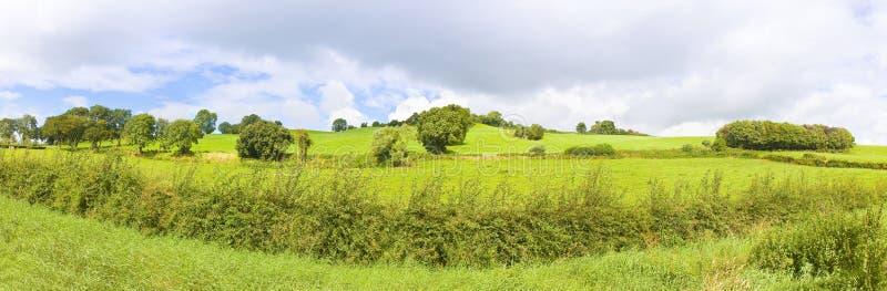 Paesaggio irlandese panoramico con un campo verde, le colline e gli alberi sul cielo nuvoloso Irlanda immagine stock