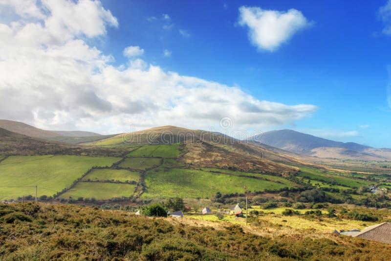 Paesaggio irlandese tipico in estate. immagini stock
