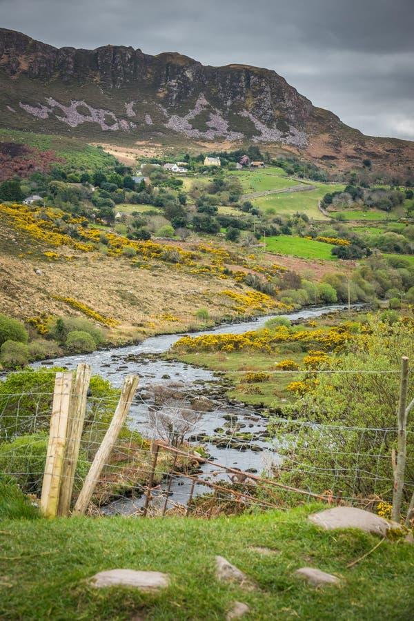 Paesaggio irlandese verde fotografia stock libera da diritti