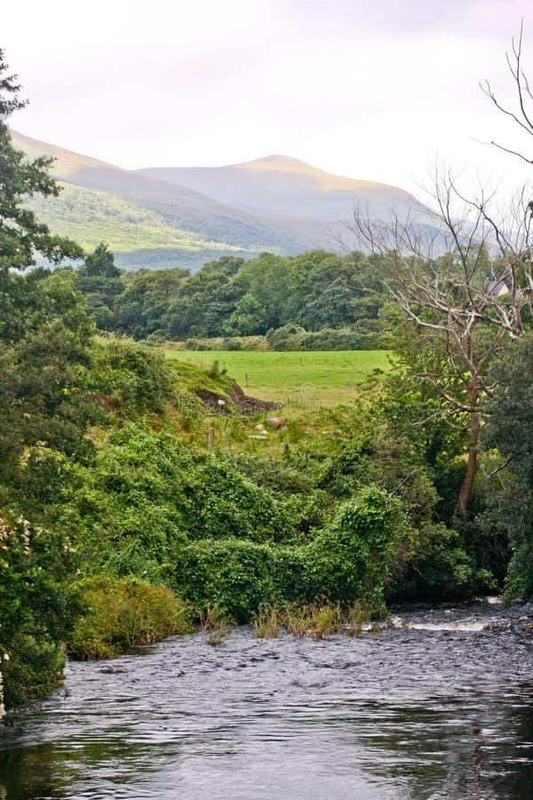 Paesaggio irlandese, vicino alla Camera di Muckross, l'Irlanda fotografie stock