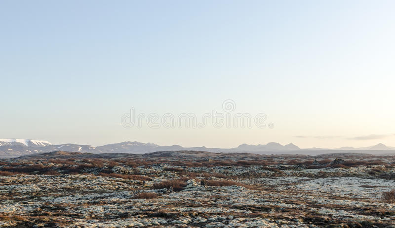 Paesaggio islandese, vulcanico e bello immagini stock libere da diritti