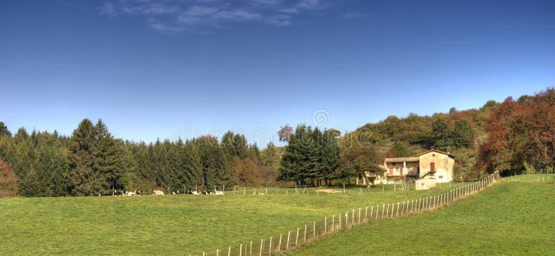 Paesaggio italiano del paese fotografie stock libere da diritti