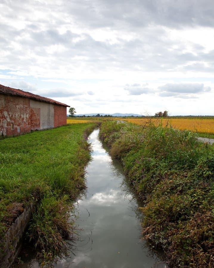 Paesaggio italiano in Piemonte, in corrente e nelle risaie in un piovoso fotografia stock