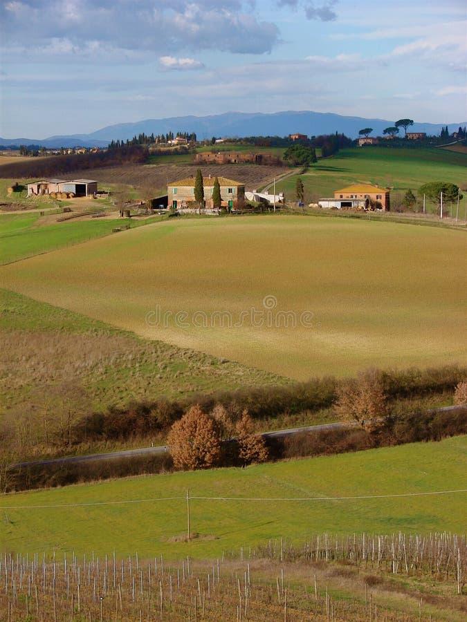 Paesaggio italiano in Toscana immagine stock libera da diritti