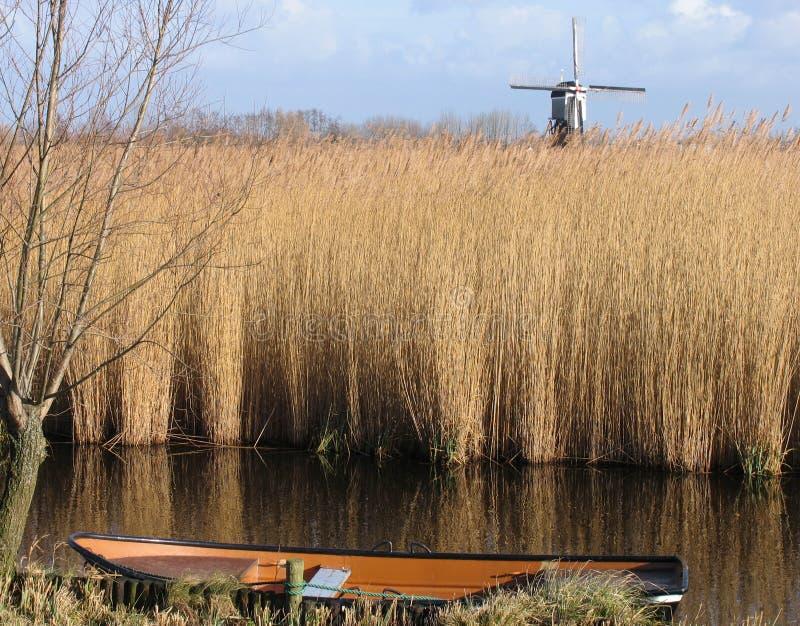 Paesaggio a lamella olandese 1 immagini stock libere da diritti