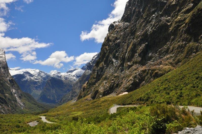 Paesaggio lungo la strada principale di Milford Sound, parco nazionale di Fiordland immagine stock libera da diritti