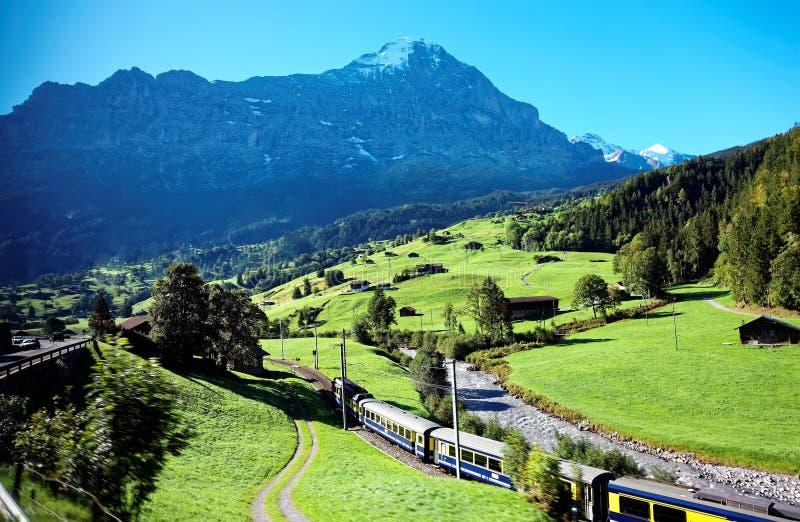 Paesaggio maestoso del villaggio di Grindelwald, con la vista di un treno alpino che viaggia sulla collina erbosa verde immagini stock