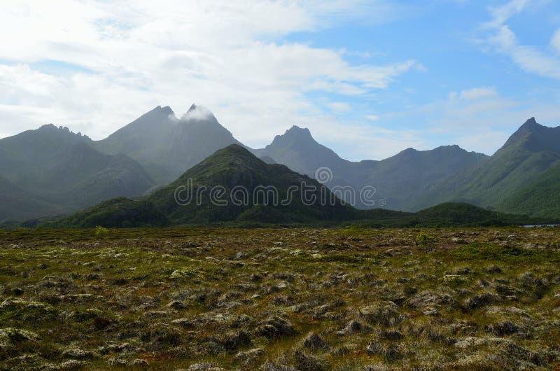 Paesaggio maestoso della palude con la montagna nebbiosa leggera nel fondo immagine stock libera da diritti