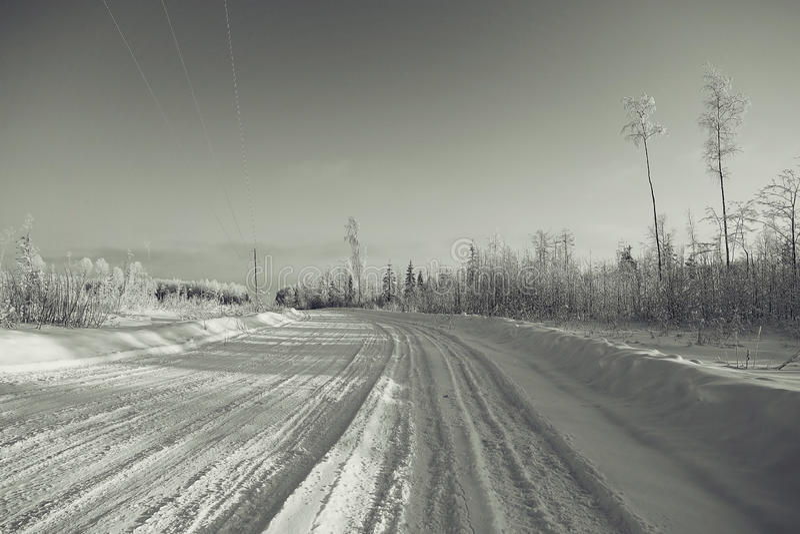 Paesaggio monocromatico di inverno fotografia stock