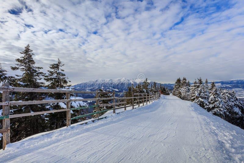 Paesaggio in montagne di Postavaru, Romania di inverno immagine stock libera da diritti