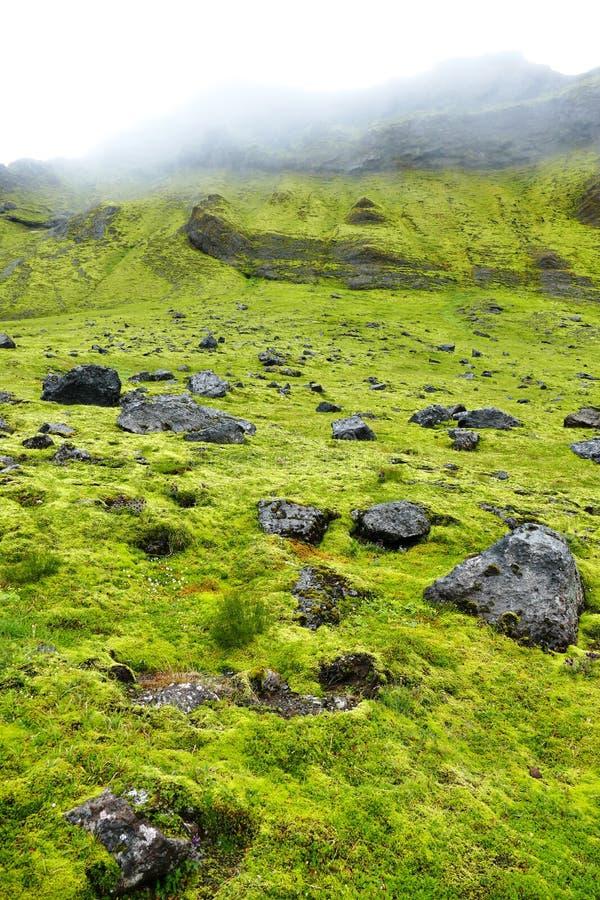 Paesaggio muscoso e nebbioso nel parco nazionale di Skaftafell immagini stock