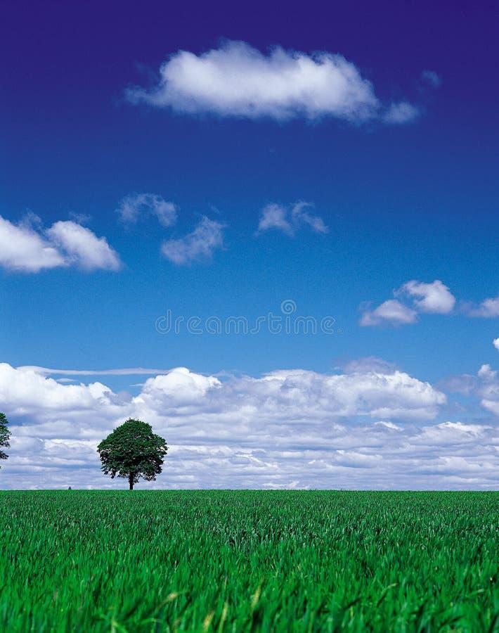 Paesaggio naturale immagini stock libere da diritti