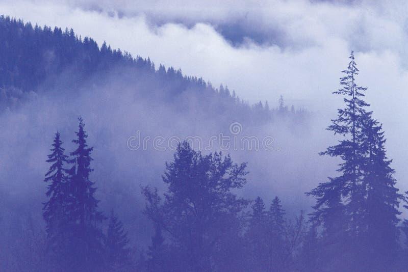 Paesaggio naturale immagini stock