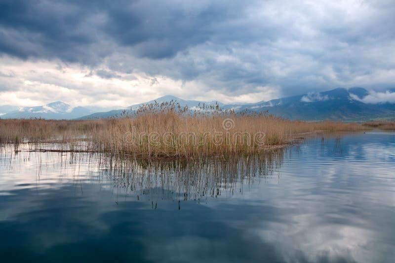 Paesaggio naturale del piccolo lago Prespa, Macedonia, Grecia immagini stock