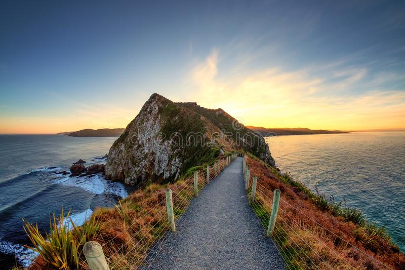 Paesaggio naturale della linea costiera nel punto della pepita, Nuova Zelanda fotografia stock libera da diritti