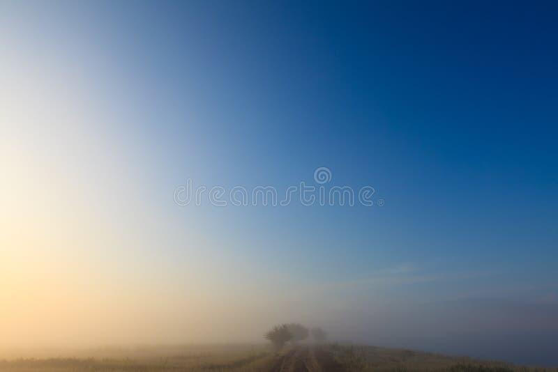 Paesaggio nebbioso del pascolo della natura di primo mattino di alba fotografie stock