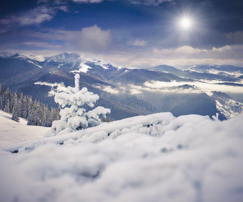 Paesaggio nebbioso di mattina in montagne di inverno fotografia stock libera da diritti