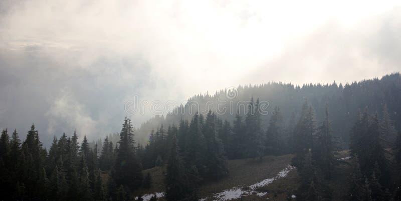Paesaggio nebbioso drammatico nelle montagne immagine stock libera da diritti