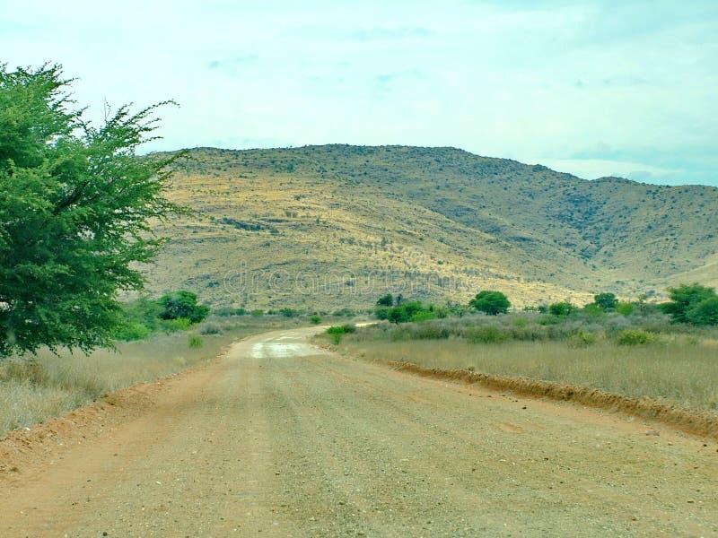 Paesaggio nel deserto del Kalahari fotografia stock libera da diritti