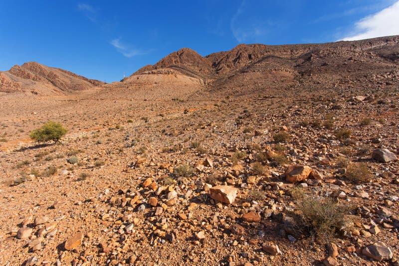 Paesaggio nel Marocco immagini stock libere da diritti