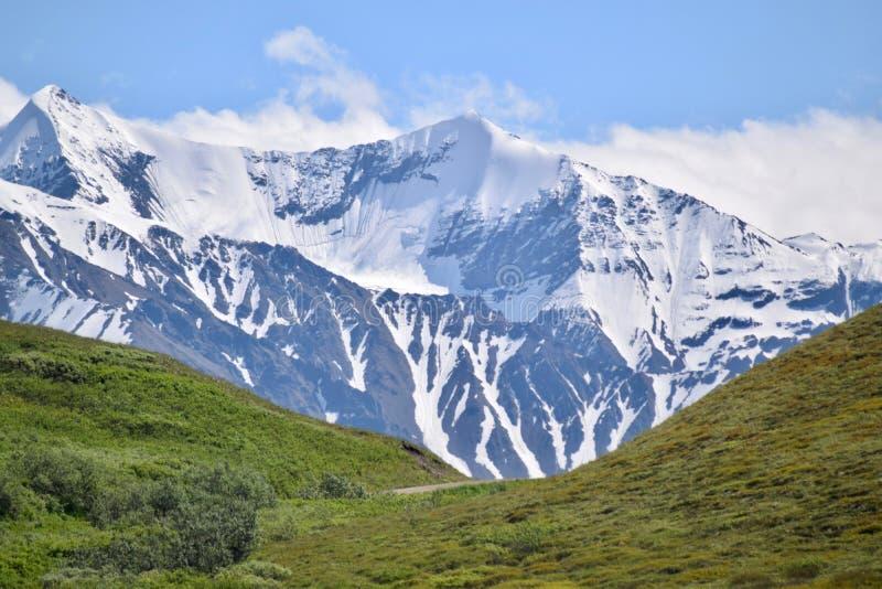 Paesaggio nel parco nazionale di Denali ed in prerogativa, Alaska fotografia stock libera da diritti