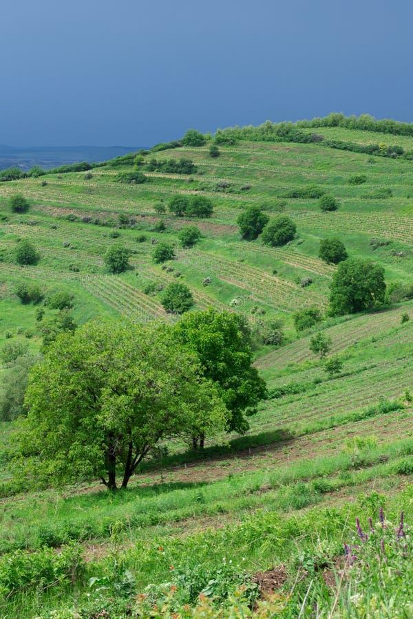 Paesaggio nella Transilvania, Romania fotografia stock