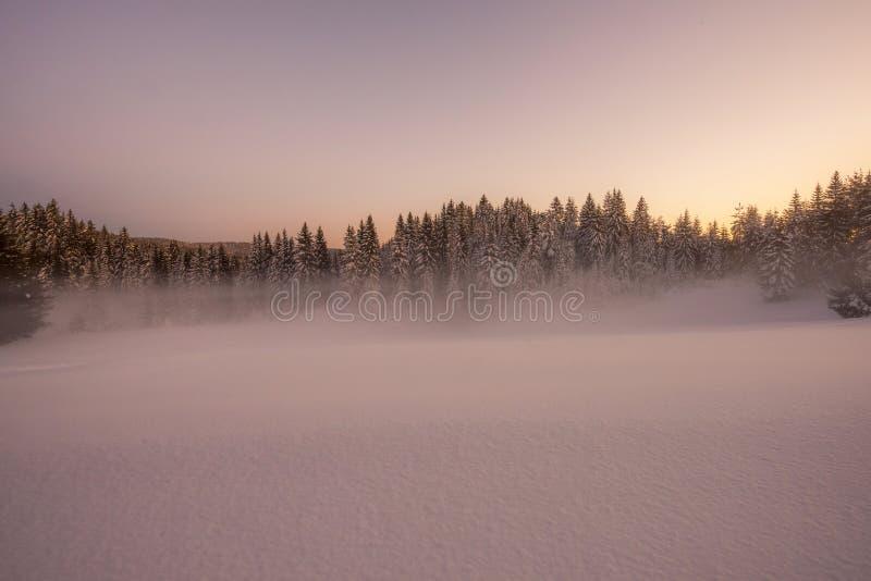 Paesaggio nevoso di inverno fotografia stock libera da diritti