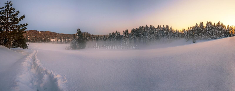 Paesaggio nevoso di inverno fotografie stock