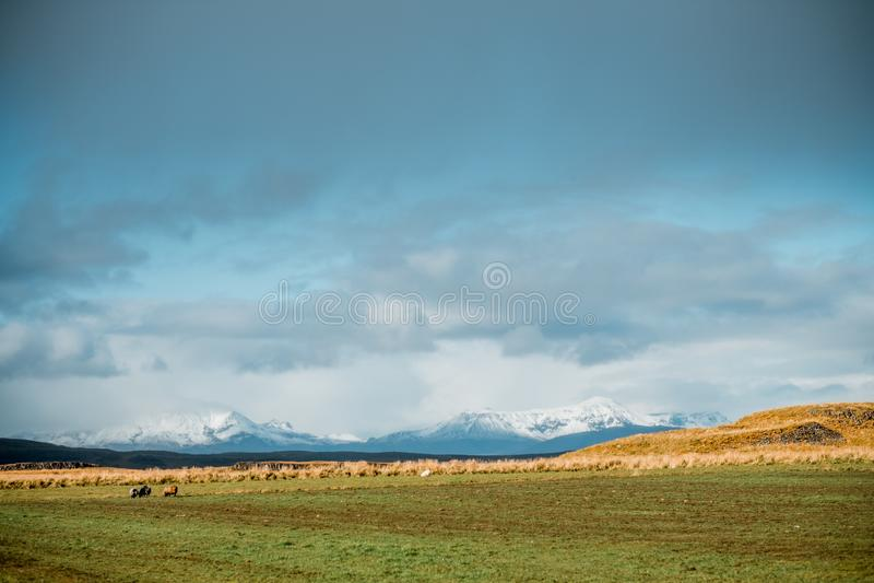 Paesaggio nordico di stupore, Islanda Pile del fieno sul campo Valle idilliaca con l'orizzonte delle montagne fotografia stock