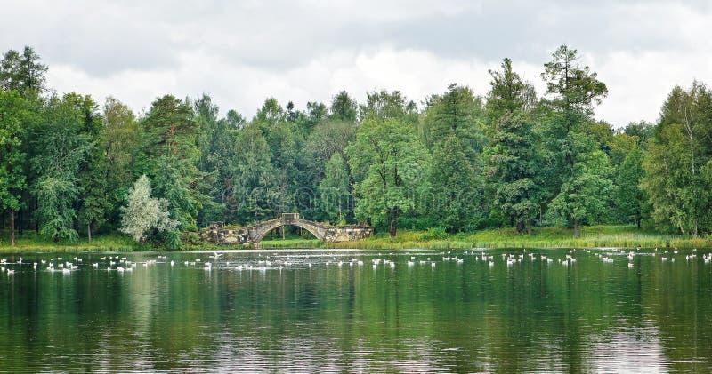 Paesaggio nuvoloso con il ponte medievale nel parco in Gatcina, t immagine stock libera da diritti