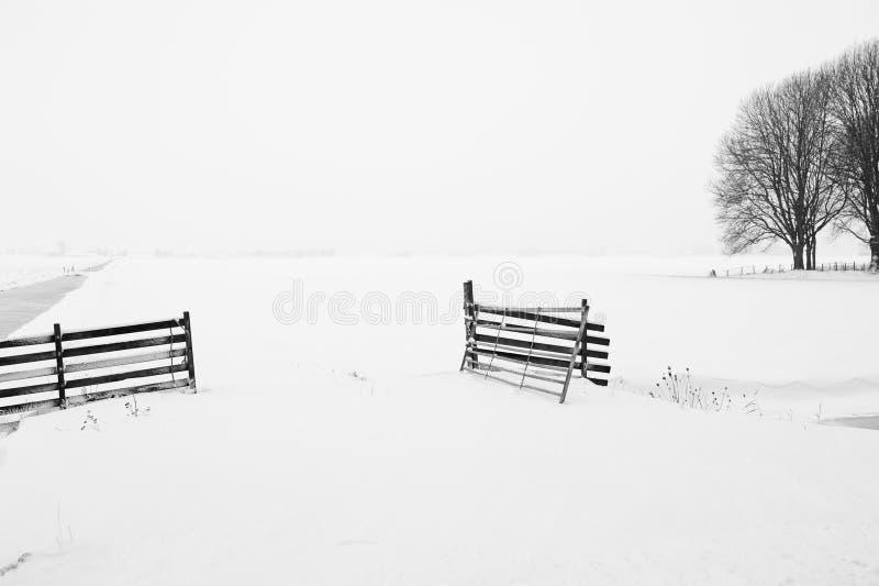 Paesaggio olandese di inverno immagine stock libera da diritti