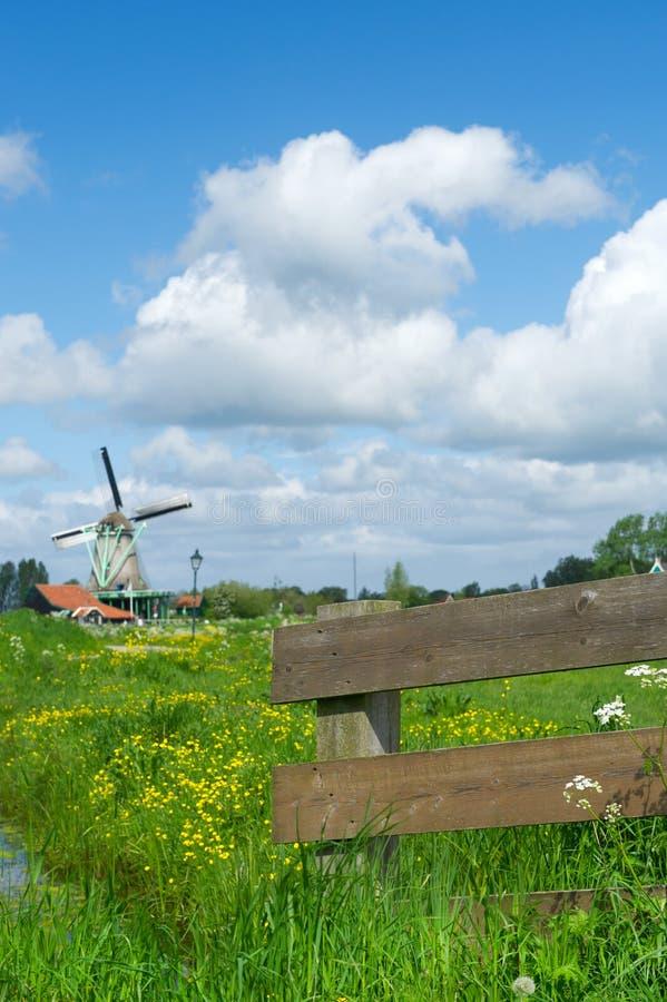 Paesaggio olandese tipico con il recinto ed il mulino a vento fotografia stock libera da diritti