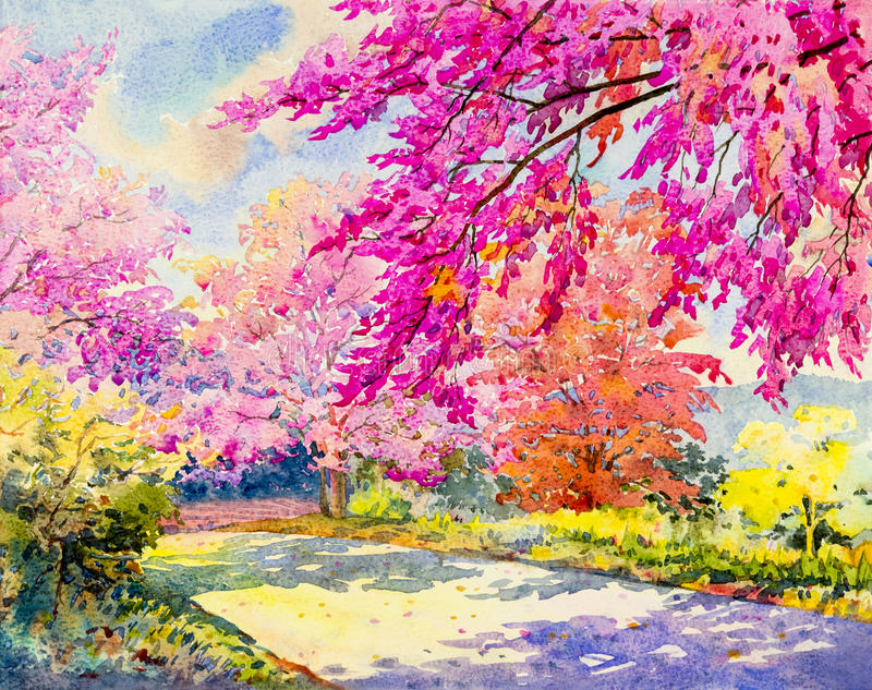 Paesaggio originale dell'acquerello che dipinge colore rosa della ciliegia himalayana selvatica royalty illustrazione gratis