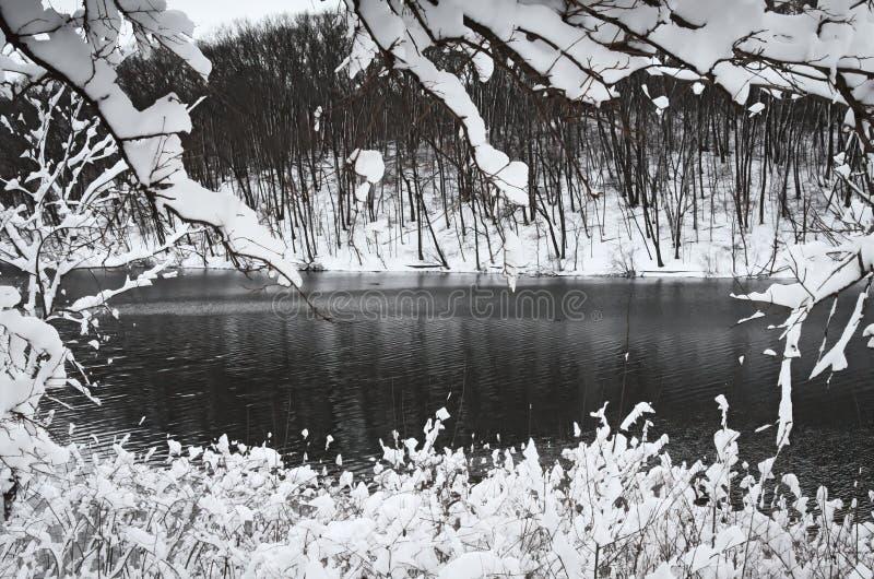 Paesaggio orizzontale ad alto contrasto di inverno immagine stock