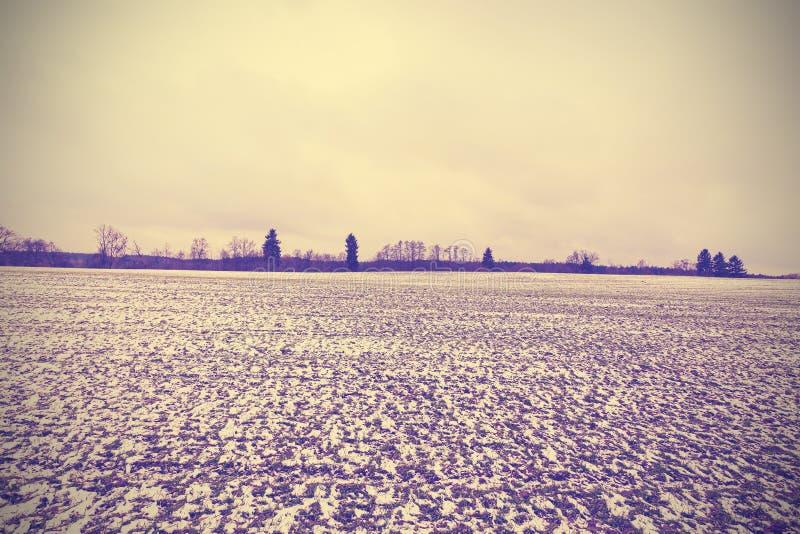 Paesaggio pacifico tonificato d'annata di inverno fotografia stock