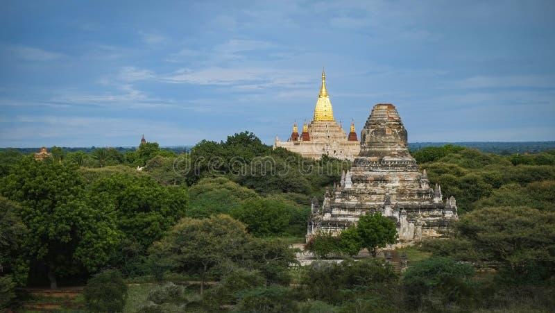Paesaggio pagoda nella pianura di Bagan Myanmar Burma - Myanmar paesaggio famoso e paesaggistico di antichi templi immagini stock