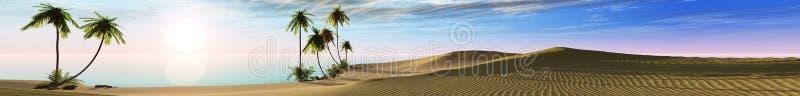 Paesaggio panoramico della spiaggia tropicale con le palme fotografia stock