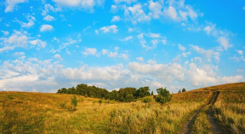 Paesaggio panoramico di estate soleggiata con la strada campestre a terra che passa attraverso il legno ed i prati verdi fotografie stock