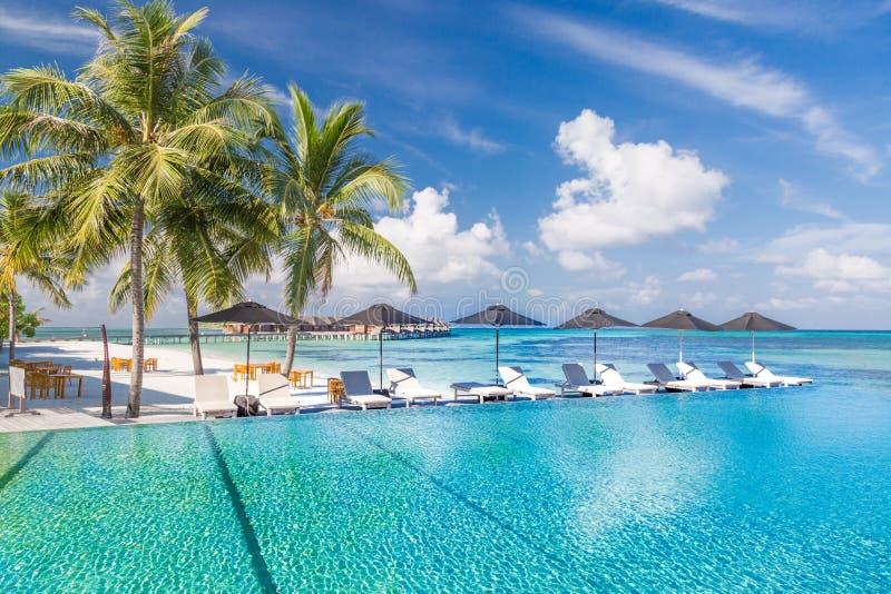 Paesaggio perfetto della spiaggia con l'albero del cocco intorno alla piscina in hotel e località di soggiorno a tempo soleggiato fotografie stock