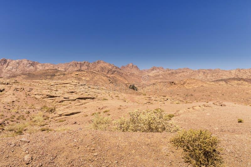 Paesaggio, pianura e montagne del deserto di arenaria rossa coperti di vegetazione rada fotografia stock