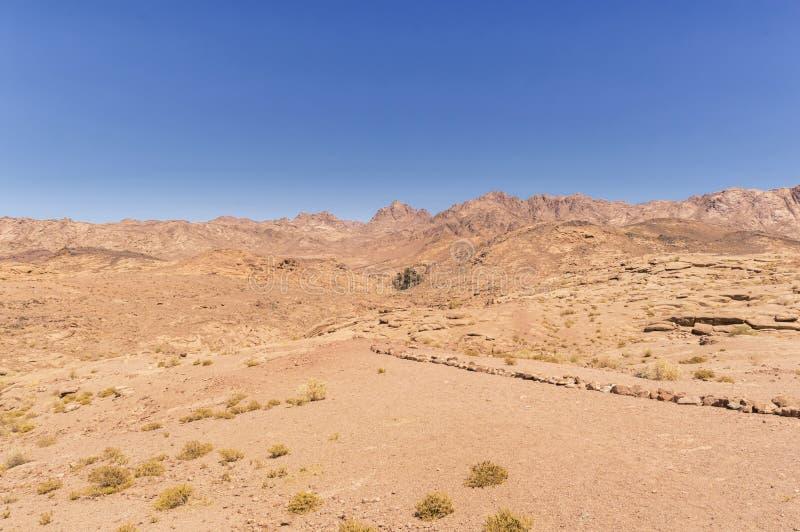Paesaggio, pianura e montagne del deserto di arenaria rossa coperti di vegetazione rada immagine stock