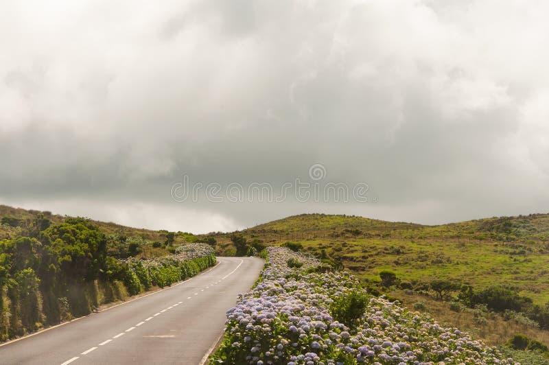 Paesaggio in Pico Island azores fotografie stock libere da diritti