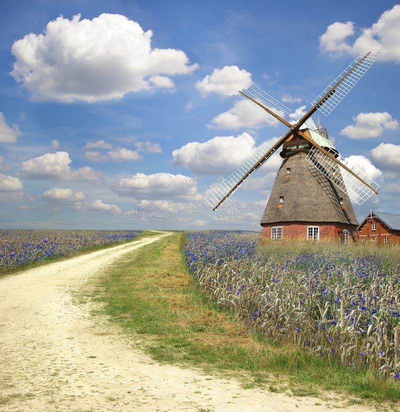 Paesaggio pittoresco con il vecchio laminatoio fotografie stock libere da diritti