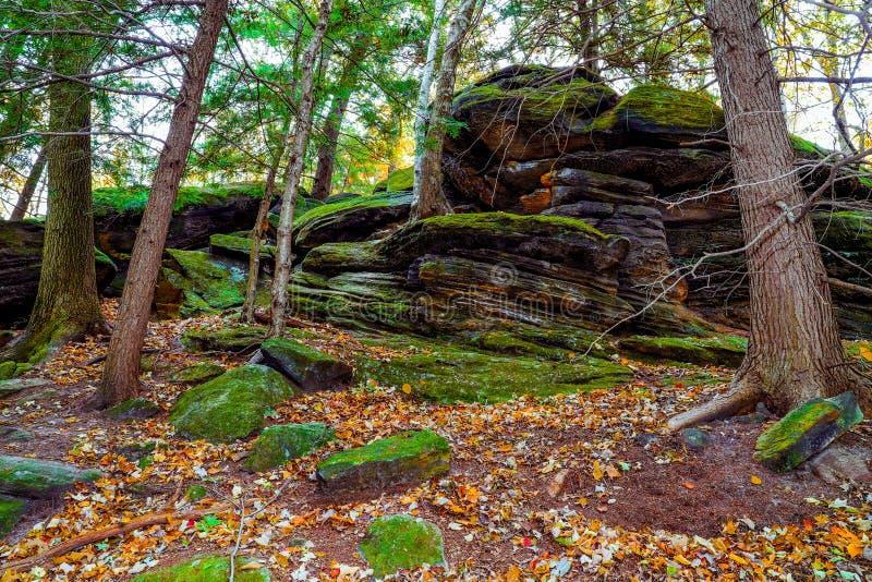Paesaggio pittoresco d'autunno fotografia stock libera da diritti