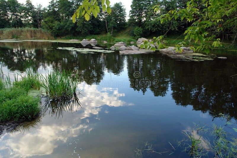 Paesaggio pittoresco del fiume di estate fotografia stock libera da diritti