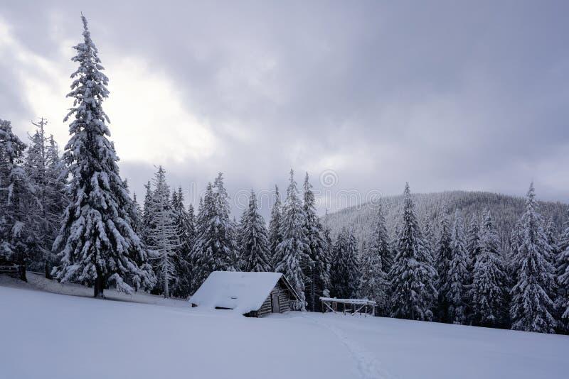 Paesaggio pittoresco di inverno con le capanne, le montagne nevose e la foresta fotografia stock libera da diritti
