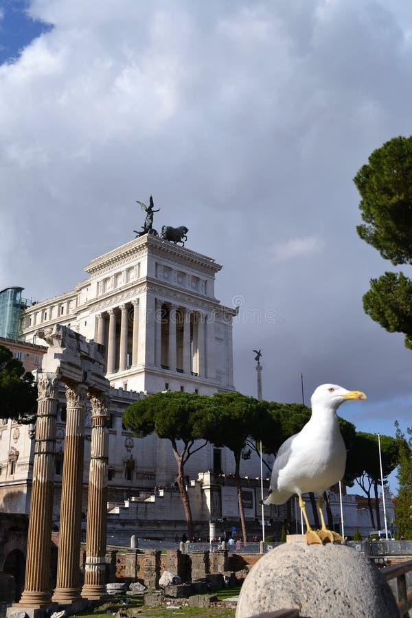 Paesaggio romano fotografie stock libere da diritti